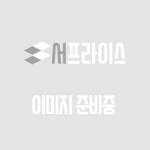 블로그 썸네일 Introversion, iNtuition, Feeling, Perception